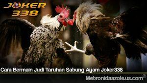 Cara Bermain Judi Taruhan Sabung Ayam Joker338